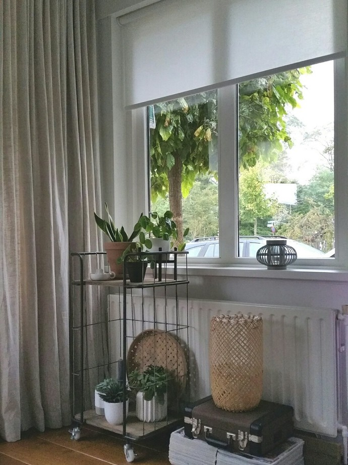inspiratie raamdecoratie lichtdoorlatend rolgordijn